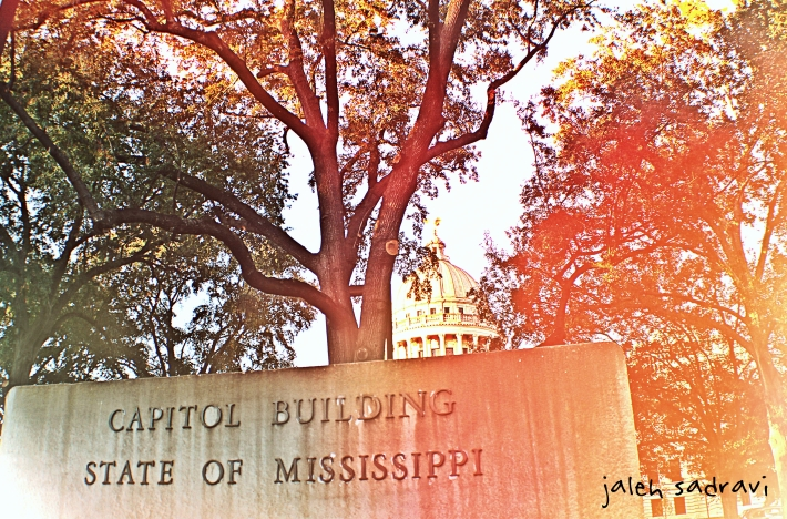 capitol building_final